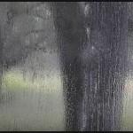 【作業用】 雨の日 【BGM】しっとりと