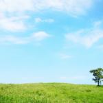【BGM】初夏の草原のイメージ 爽やかで希望に満ちた印象