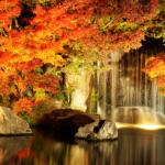 【BGM】「Kyoto Autumn leaves」秋の京都を想起させるピアノのインストゥルメンタル。心穏やかに(*´ω`*)