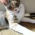 (ΦωΦ) 明々後日(7月18日 火曜日)の猫の本ニャ~